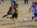 Saaremaa Cup 17
